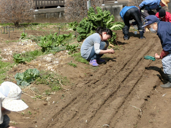 H280327農園ポット作業 (1)