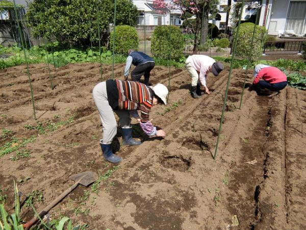 H280418野島農園 (8)