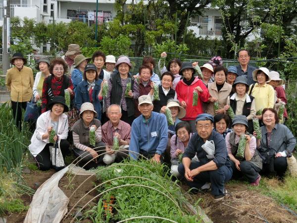 H280506いやし収穫体験スナップエンドウ (2)