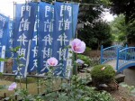 H280723稲荷神社・厳島神社清掃 (19)