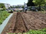 H280505夏野菜植え付け (14)