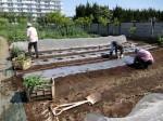 H280505夏野菜植え付け (7)