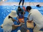 H280806六小避難防災訓練 (62)