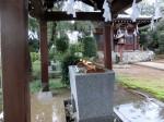 H281001門前氷川神社秋季大祭 (1)