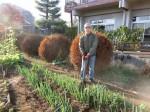 H281107農園育成管理 (21)