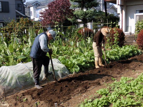 H281107農園育成管理 (13)