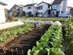 H281107農園育成管理 (20)