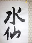 H281202高齢者元気長生き体操 (33)