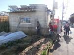 H281217いやし収穫体験サツマイモ掘り (21)