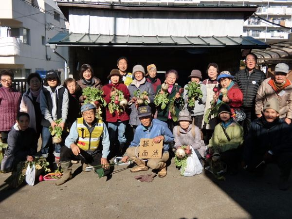 H281217いやし収穫体験サツマイモ掘り (37)