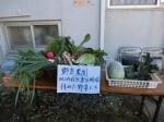 H281217親子農業体験サツマイモ掘り・いやし収穫体験 (123)