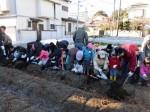 H281217親子農業体験サツマイモ掘り・いやし収穫体験 (25)