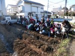 H281217親子農業体験サツマイモ掘り・いやし収穫体験 (37)
