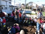 H281217親子農業体験サツマイモ掘り・いやし収穫体験 (41)