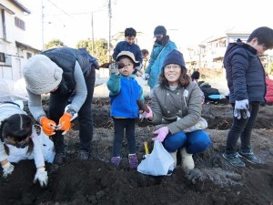 H281217親子農業体験サツマイモ掘り・いやし収穫体験 (44)
