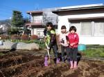 H281217親子農業体験サツマイモ掘り・いやし収穫体験 (47)