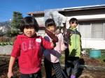 H281217親子農業体験サツマイモ掘り・いやし収穫体験 (48)