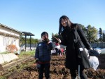 H281217親子農業体験サツマイモ掘り・いやし収穫体験 (50)