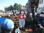 H281217親子農業体験サツマイモ掘り・いやし収穫体験 (64)