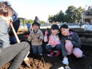 H281217親子農業体験サツマイモ掘り・いやし収穫体験 (66)