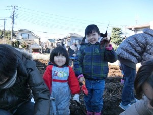 H281217親子農業体験サツマイモ掘り・いやし収穫体験 (75)