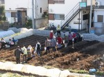 H281217いやし収穫体験サツマイモ掘り (3)