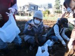 H281217いやし収穫体験サツマイモ掘り (46)