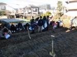 H281217親子農業体験サツマイモ掘り・いやし収穫体験 (18)