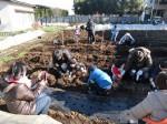 H281217親子農業体験サツマイモ掘り・いやし収穫体験 (61)