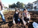 H281217親子農業体験サツマイモ掘り・いやし収穫体験 (69)