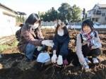 H281217親子農業体験サツマイモ掘り・いやし収穫体験 (71)