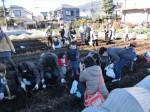 H281217親子農業体験サツマイモ掘り・いやし収穫体験 (76)