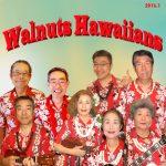 ウォールナッツ ハワイアンズ