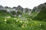 高山植物の園