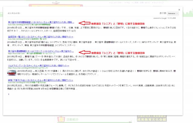 Google カスタム検索使用方法4